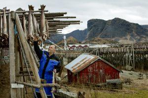 Tørrfisk fra Værøy